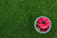 Top view of dried flowers in glass on green grass background Royalty Free Stock Images