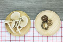 Top view of dried shiitake mushrooms and Oyster mushrooms. Royalty Free Stock Image