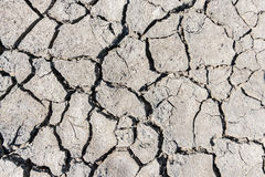 Drought cracked soil texture.Dry mud background texture. Global Warming Royalty Free Stock Photos