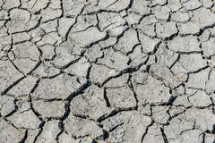 Drought cracked soil texture.Dry mud background texture. Global Warming Stock Images