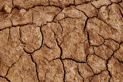 Top view Dry soil is rift Close up Stock Photography