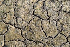Top view Dry soil is rift Close up Royalty Free Stock Photography