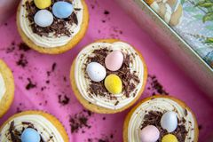 Top View of Easter Cupcakes with Candy Eggs. Easter egg candy cupcakes with vanilla frosting on a pink paper background in a spring box Royalty Free Stock Photo