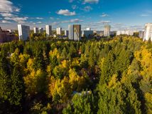 Top view on ecologically clean area of Moscow with autumn forest. Russia. Top view on an ecologically clean area of Moscow with autumn forest. Russia royalty free stock images