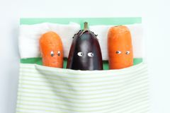 Top view of eggplant lying with two carrots in bed royalty free stock images