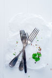 Empty plate with cutlery and sprigs of parsley Royalty Free Stock Photos