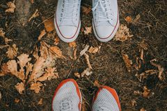 Top view feet of the male and female are couple lover standing on small autumn grass. On the ground Stock Images