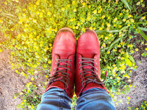 Top view feet ware red boots of the girl standing. On small grass on the ground with gold light stock image