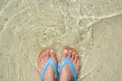 Feet women and sandal on the beach. Top view feet women and sandal on the beach Stock Images