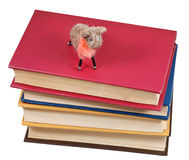 Top view of felt soft toy sheep on books Stock Photos