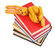 Top view of felt toy rabbit lies on books Royalty Free Stock Photos