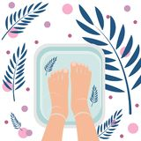 Top view of female feet in bath for cleansing. Spa procedure, pedicure. Nice atmosphere with plant leaves. Vector illustration royalty free illustration