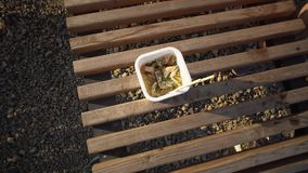 Human is going to eat instant noodles from box on deck chair. Top view of a female hand sticks chopsticks into noodles, a white take-out box with pasta and stock footage
