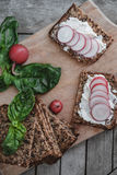 Top view Fitness bread with cottage cheese, radish and basil on Stock Photography