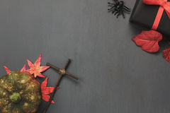 Top view / Flat lay Halloween `s pumpkin and accessories or items the leaf spider and gift / present on rustic wooden background. Royalty Free Stock Photos