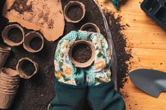 Top view of florist holding soil in flowerpot. Directly above the table wit gardening and planting equipment stock photo