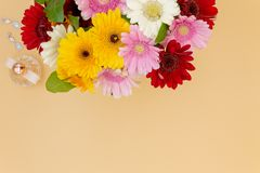 Top view flower bouquet blank space for text stock photography