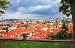 Top view through flowers to red tile roofs of Prague city Czech republic, beautiful blue sky with clouds. Typical Prague Royalty Free Stock Image