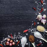 Top view of food ingredients and condiment on the table, Ingredients and seasoning on dark wooden floor Royalty Free Stock Images