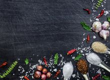 Top view of food ingredients and condiment on the table, Ingredients and seasoning on dark wooden floor Stock Photography