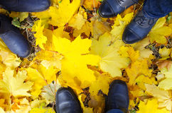 Top view of a foot in the autumn boots three people Stock Image