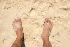 Top view foot guy on sandy beach Stock Photography