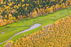 Top view of forest lakes in autumn Royalty Free Stock Image
