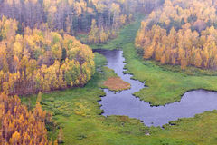 Top view of forest lakes in autumn Stock Images