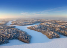 Top view forest plain in a frosty day Royalty Free Stock Image