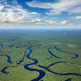 Top view the forest river Royalty Free Stock Images