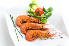 Top view of fresh grilled jumbo prawns with green salad. Stock Photography