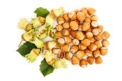 Top view of fresh hazelnut Stock Photos