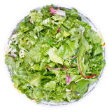 Top view of fresh italian lettuce mix. In bowl isolated on white background Royalty Free Stock Image