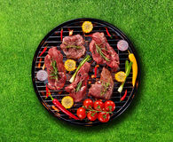 Top view of fresh meat and vegetable on grill placed on grass. Barbecue, grill and food concept Stock Image