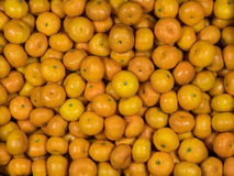 Top view of fresh oranges Royalty Free Stock Photos