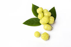 Top view fresh Phyllanthus acidus or  star gooseberry Stock Photography