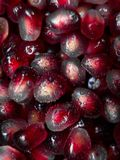 Top view of fresh pomegranate seed with water droplets royalty free stock photos