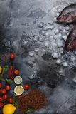 Top view of fresh raw sea fish on ice cubes with lemons, spices and cherry tomatoes. On grey Royalty Free Stock Photography