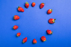 Top view of fresh red strawberries in circle  on blue Royalty Free Stock Photo