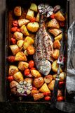 Fresh seabream and potatoes with herbs and tomatoes. Top view of fresh seabream and potatoes with herbs and tomatoes royalty free stock photos