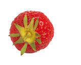 Top view of fresh strawberry isolated on white. Strawberry top view macro detail of summer fruit stock images