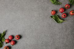 Top view of fresh tomatoes, basil and salt on grey background stock image