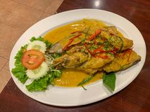Top view Fried Fish with Red Curry Paste Chu Chee Pla on white plate . Fried Fish with Red Curry Paste Chu Chee Pla on white plate , Thai food, Asian food stock images