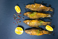 Top view of fried tench fish served with aromatic rosemary, lemo Stock Photos