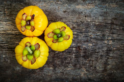 Top view.  Garcinia cambogia fresh fruit on wood background.  Fr. Top view. Three garcinia cambogia fruit on wood background and free form copy space. Garcinia Royalty Free Stock Image