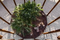 Top view of a garden inside a structure stock photo