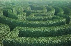 Top view of a garden maze Royalty Free Stock Photography