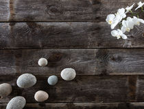 Top view of genuine wood background with pebbles and orchids Stock Images