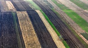 Top view of geometrical crops Stock Photo