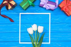 Top view of gift boxes and white tulips in frame on blue table royalty free stock image